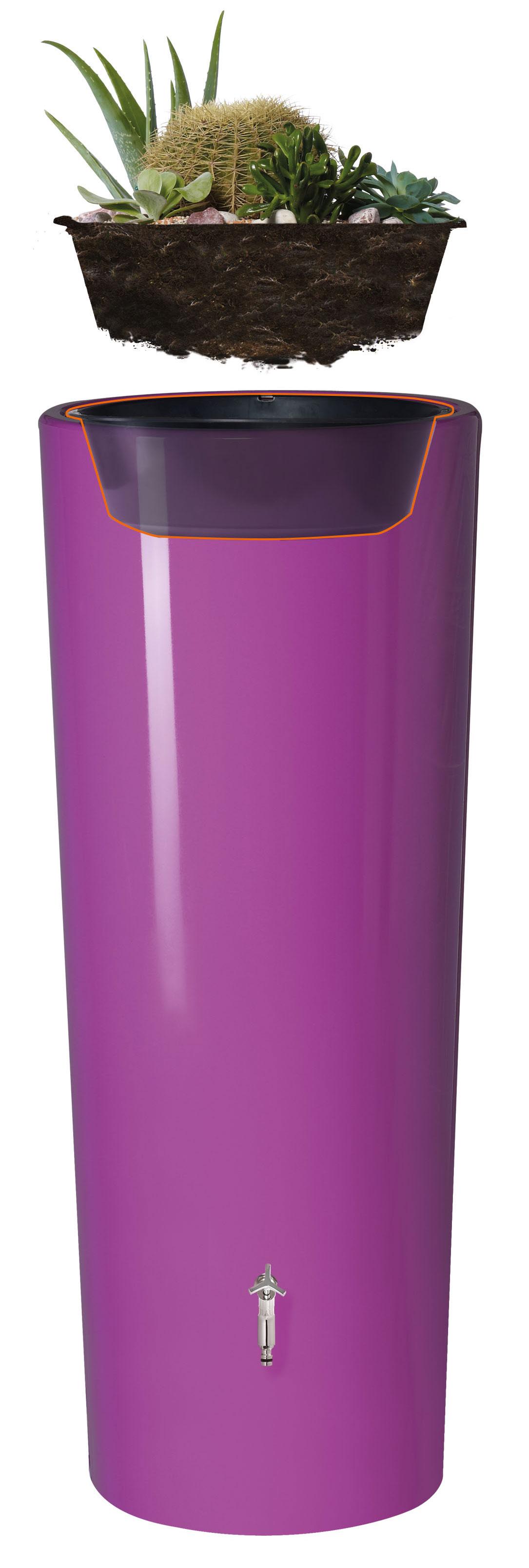 Pflanzschale Ersatzteil für 2in1 Wasserbehälter GRAF Bild 3