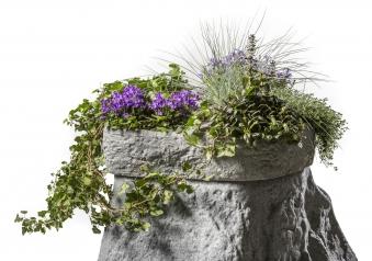 Pflanzschale für Regentonne Hinkelstein GreenLife sand Bild 2